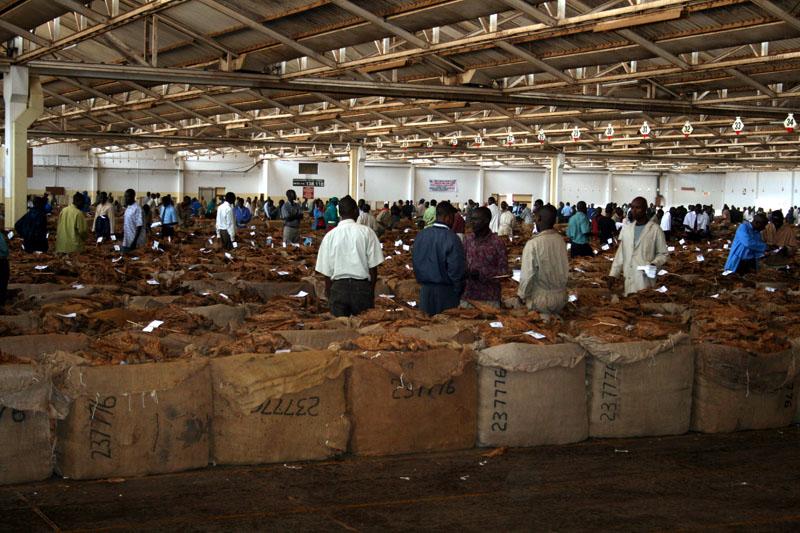 Malawi crop confirmed