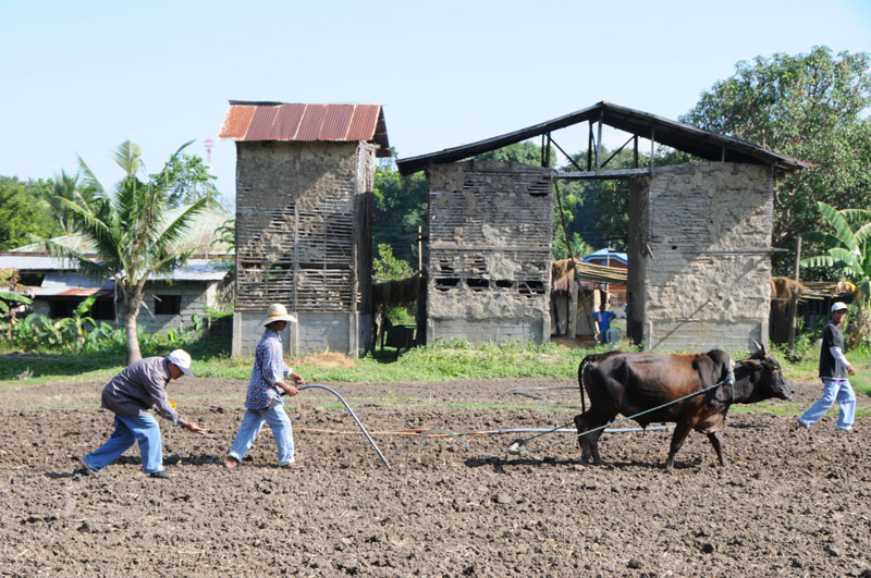 Plea for farmers