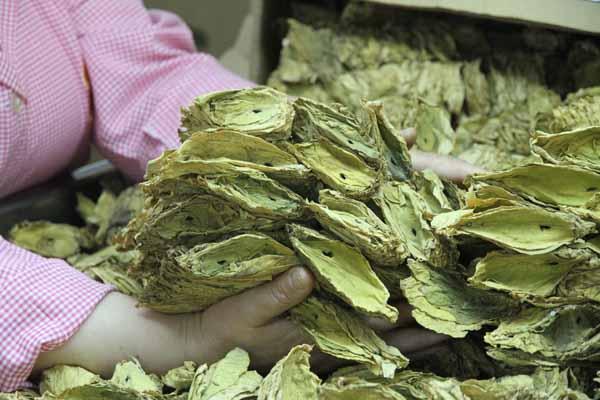 $1 billion of tobacco exports