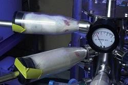 'Horrifying' experiments