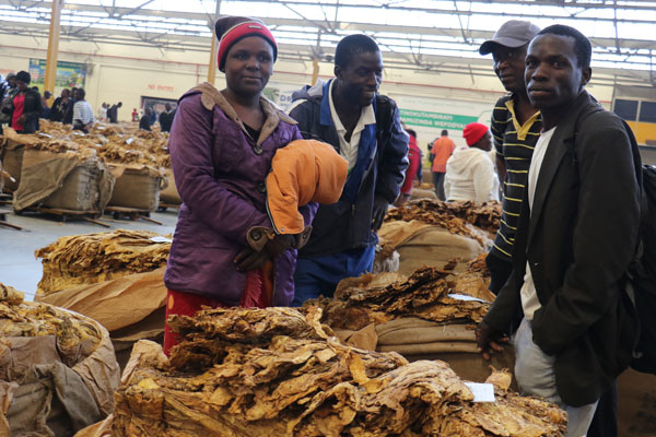 Zimbabwe: New System to Pay Farmers Quickly