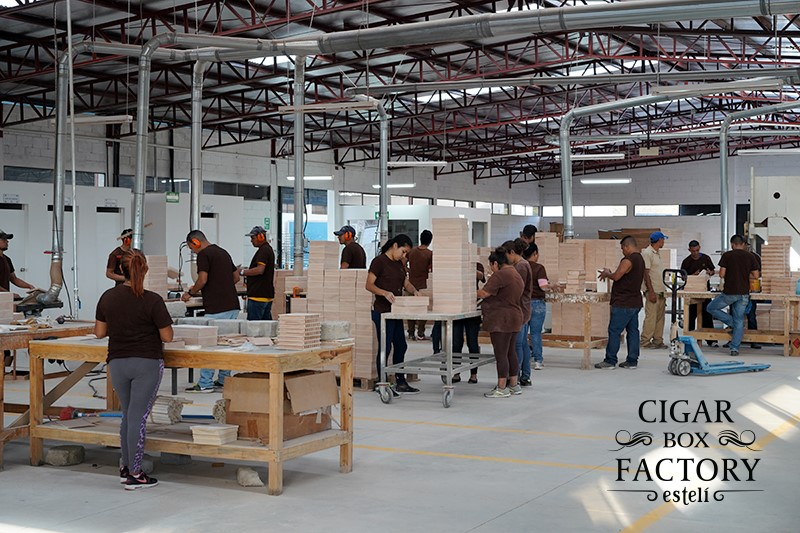 Estelli Opens Factory