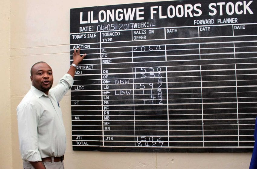 Malawi Hopes Lower Production Will Bring Higher Prices