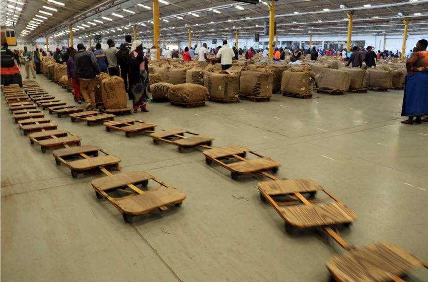 Zimbabwe Union Calls for Auction Delay