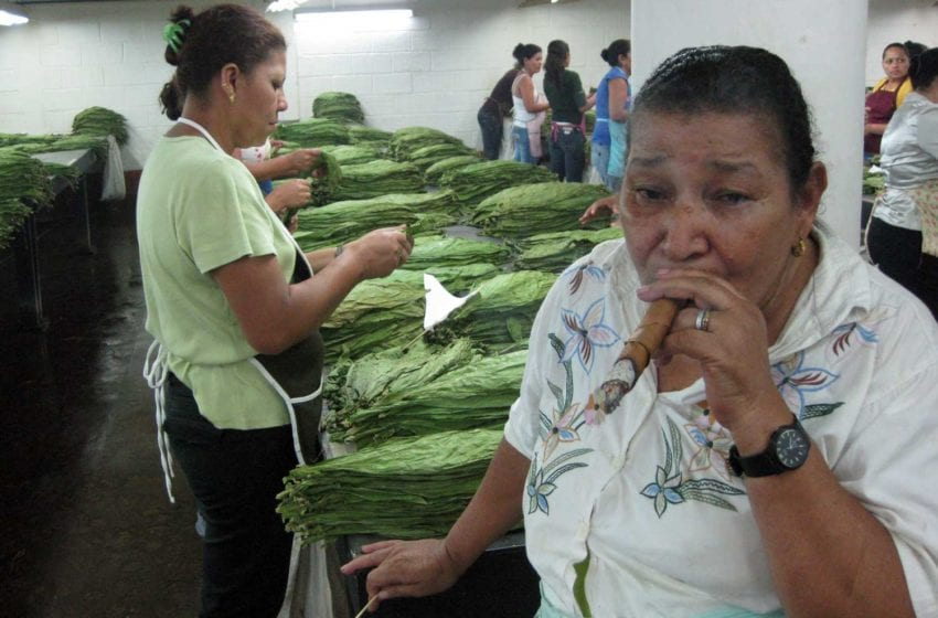 Honduras Orders Cigar Factories to Close