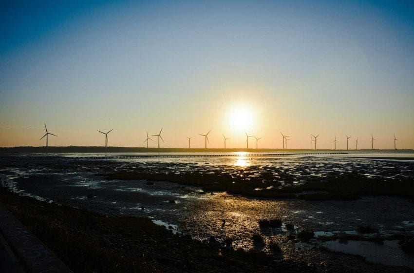 Environmental Leadership Recognized