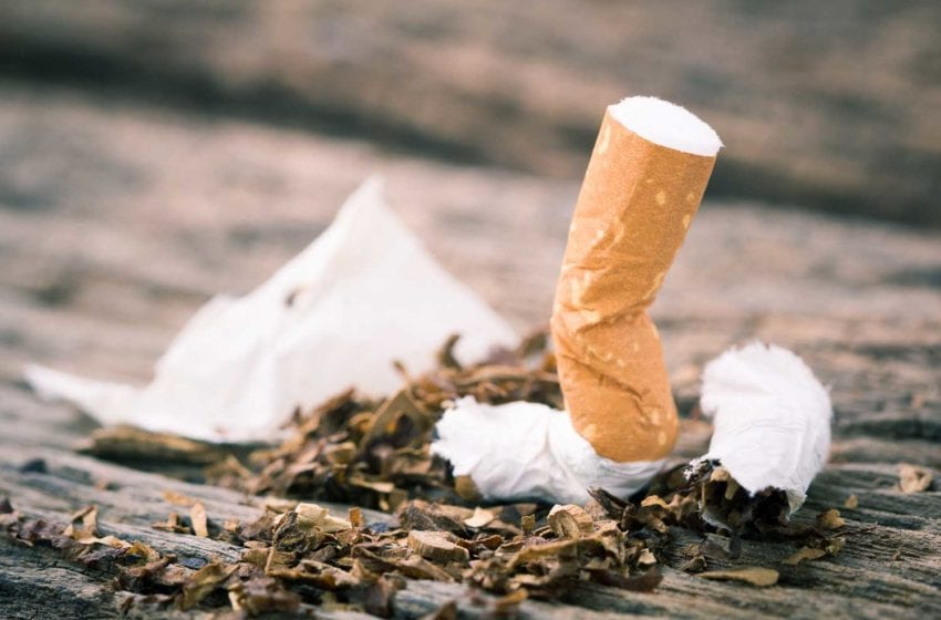 Researchers Urge Ban on Cigarette Filters