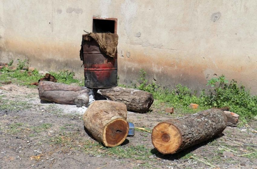 Forestry Officials Sound Alarm in Zimbabwe