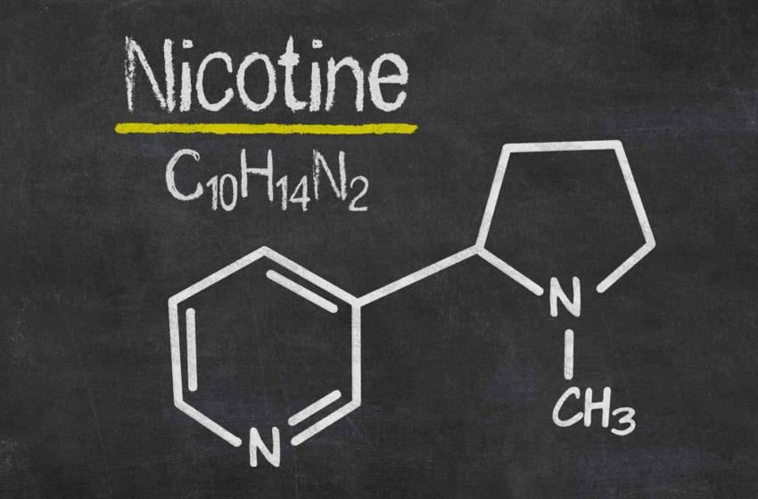 Australian Patent for NGL's Synthetic Nicotine