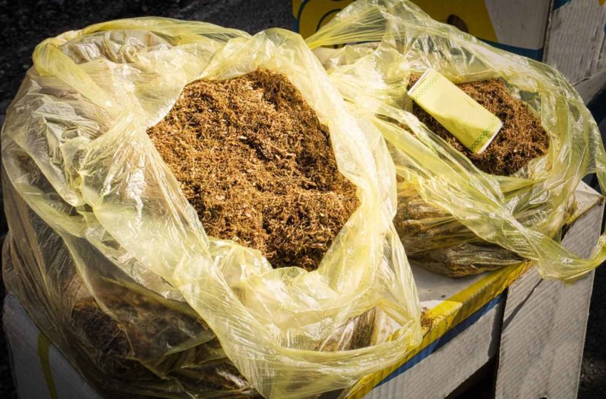 'Spike in Seizures Hints at Illegal Production'