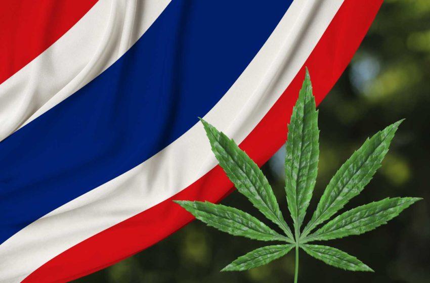 Tobacco Authority of Thailand Creates Hemp Subsidiary